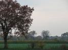 Leineaue im Herbst 2012_1