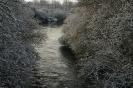 Winter in der Leineaue 13.12.2012